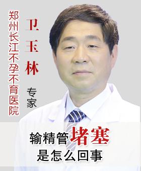 郑州长江不孕不育医院卫玉林主任:输精管堵塞是怎么回事